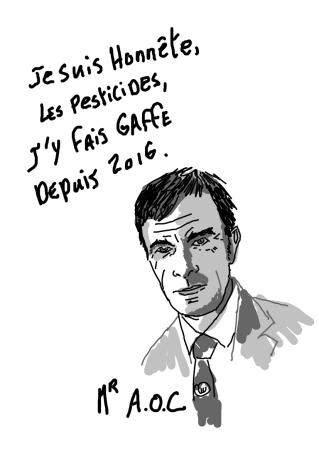 monsieur aoc web