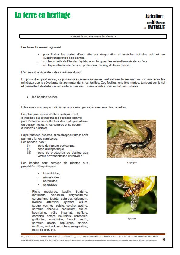 CCC Fichier conseil Méthode Carnavalet_006